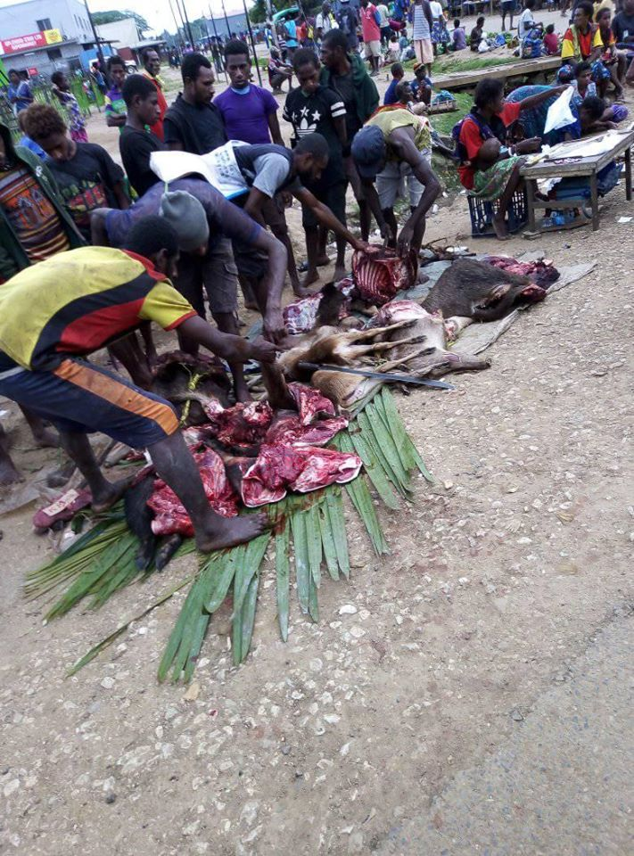 Venison can be bought in local markets in Western Province
